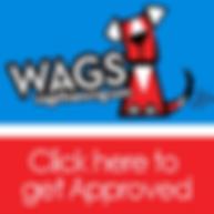 WAGS lending financing.png