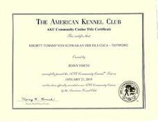 Tchamp AKC CGCA certificate.jpeg