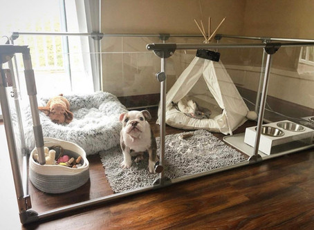 Puppy Playpens with style