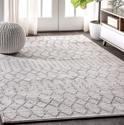 Check out this gorgeous Area Rug -  under $88?!?