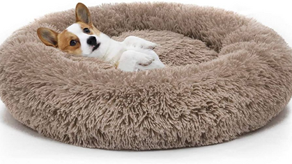 Donut Cuddler 40% OFF with code! Your pup will thank you!