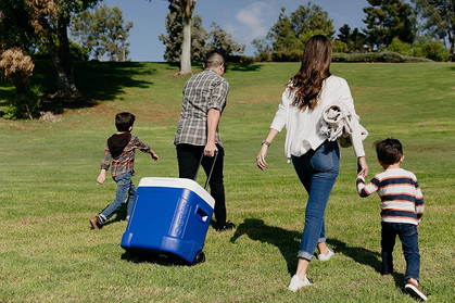 Check out this BIG Igloo rolling cooler deal!