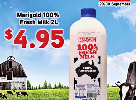Marigold Fresh Milk promotion