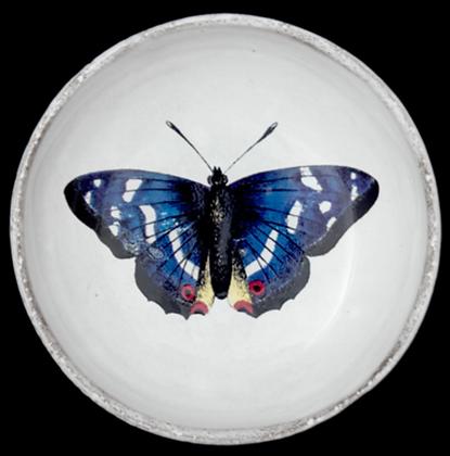 Coupelle Papillon Bleu - JOHN DERIAN