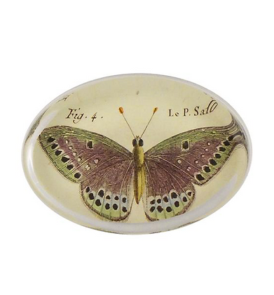 Oval Paperweight - Butterfly