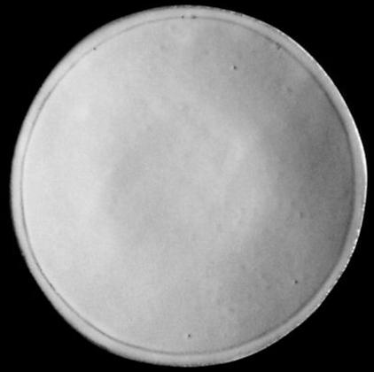 Assiette Plate - SIMPLE