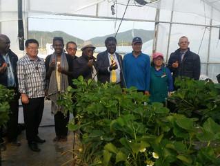 치유농장 푸른햇살 영농조합법인프로그램  컨설팅