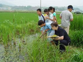 녹색농촌체험마을 컨설팅_재능기부(한국농어촌공사)