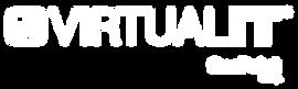 Logo VirtualIT 2021® Tamaño grande con O