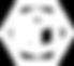 Virtualización_hexágono.png