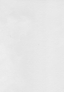 LightenedpaperTextureForWebsite.19.7.19.png