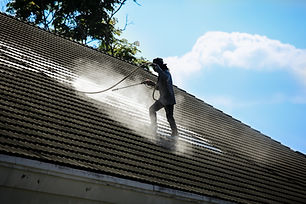 Clean the roof with high pressure water.