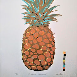 DylanBell_Pineapple(3)_edited.jpg