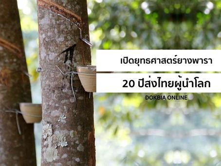 เปิดยุทธศาสตร์ยางพารา...20 ปีส่งไทยผู้นำโลก