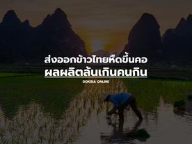 ส่งออกข้าวไทยหืดขึ้นคอ ผลผลิตล้นเกินคนกิน