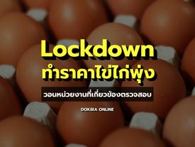 Lockdown ทำราคาไข่ไก่พุ่ง...วอนหน่วยงานที่เกี่ยวข้องตรวจสอบ