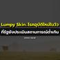 Lumpy Skin...โรคอุบัติใหม่ในวัว ที่รัฐยังประเมินสถานการณ์ต่ำเกิน
