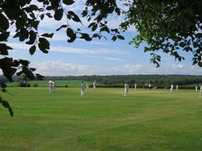 Brigands Cricket Video