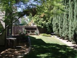 Peaceful backyard.JPG