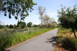 Biking & Jogging Trails