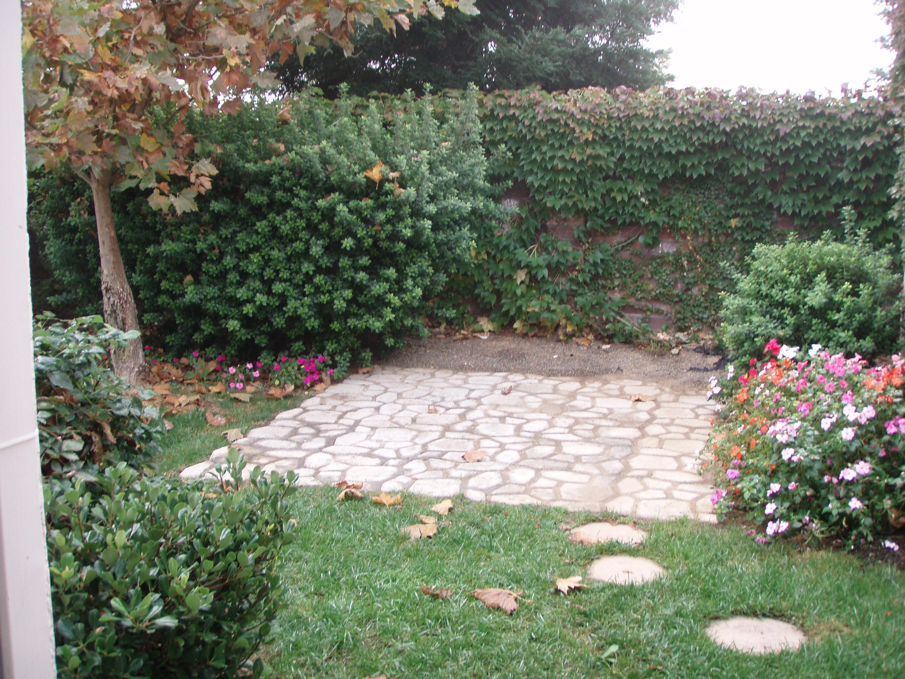 Cute Backyard.JPG