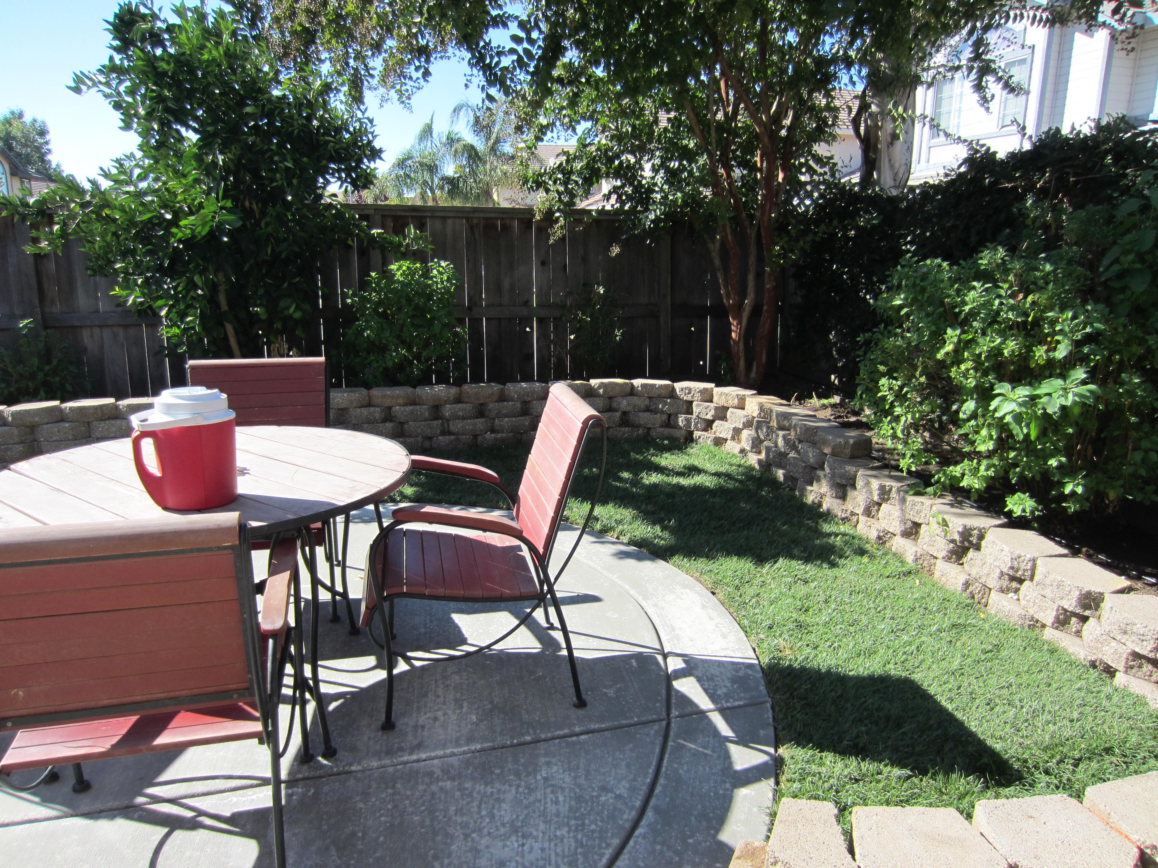 Backyard 3.JPG