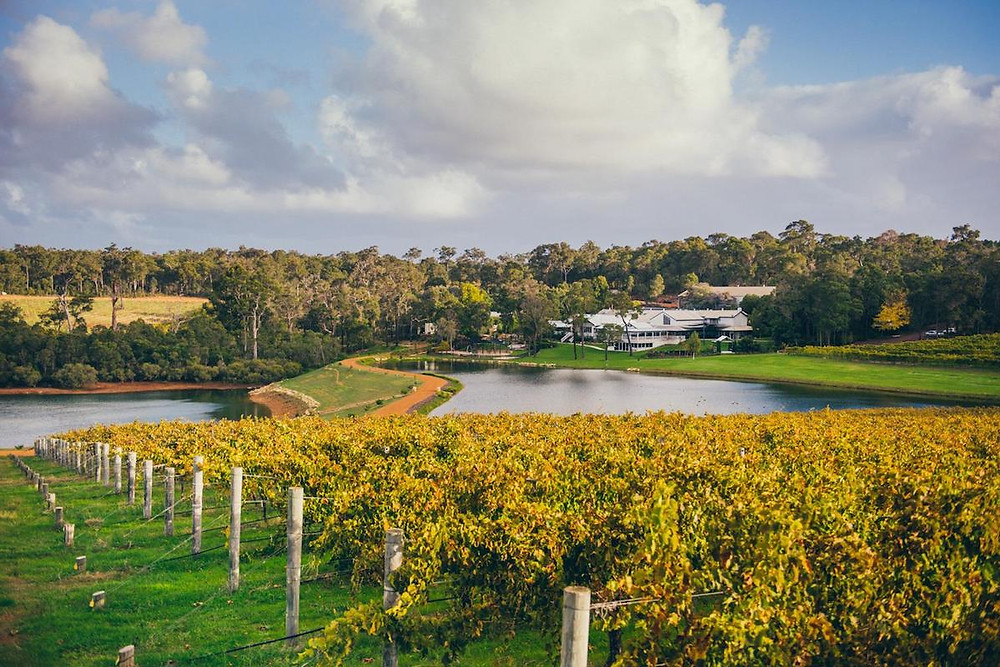 Western Australia's Margaret River is one of the country's top wine growing regions