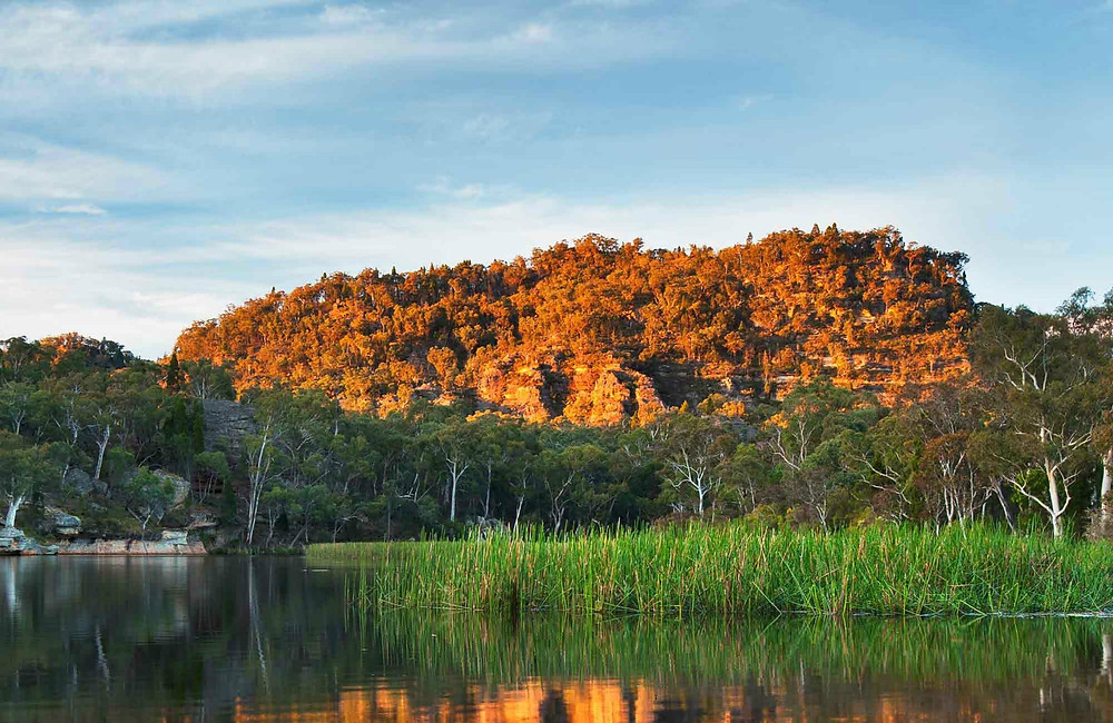 World Heritage-listed wilderness in the protected Wollemi National Park, Mudgee, NSW