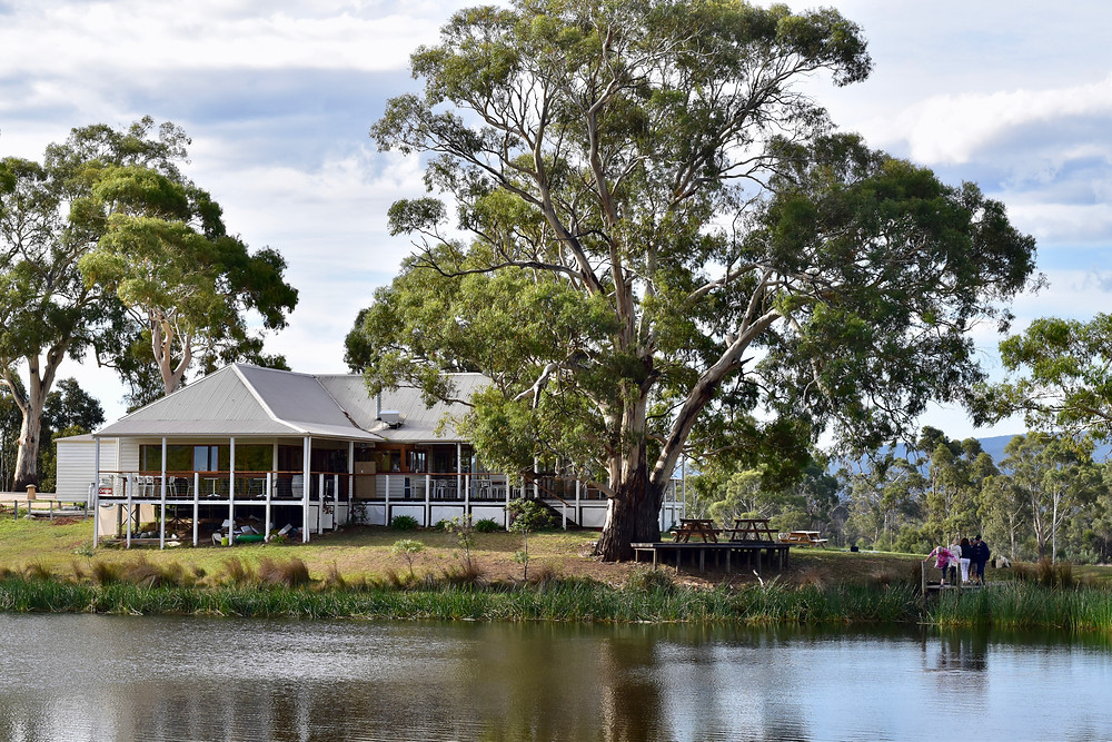 Lakeside lunch and wine tasting at Milton Vineyard is a perfect Tassie road trip pitstop