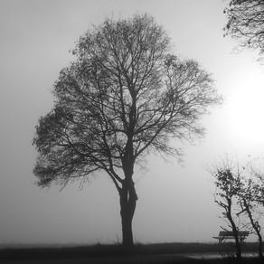 Winter Depression - Seasonal Affective Disorder (SAD)