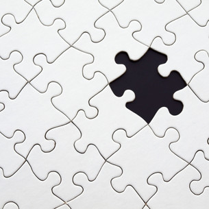 The missing piece -  struggles of trailing spouses