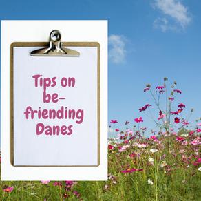 Tips on befriending Danes!
