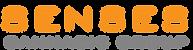 New Senses Logo.png