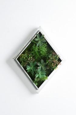 Iora C White Rustic Vertical Garden Tile