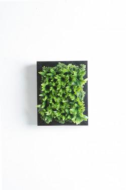 Iona Silver Frame Vertical Garden Tile
