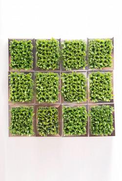 Iona Silver Frame Vertical Garden