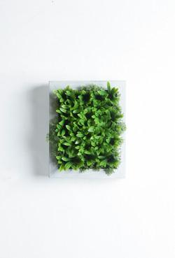 Iona White RusticFrame Vertical Garden Tile