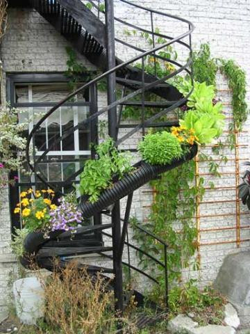 Image result for staircase garden