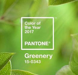 E' Greenery il Colore dell'Anno!