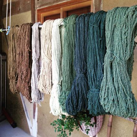 綿糸(染色作業中)/ Cotton yarn