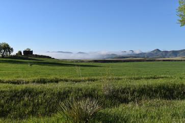 Ranch Mornings.JPG