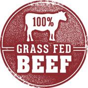 Grass Fed Beef Colorado