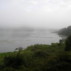 A foggy Aniwhenua