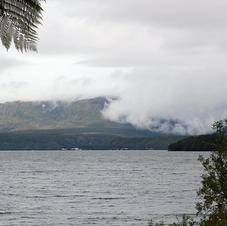 A broody Tarawera