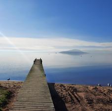 Lake Rotorua morning