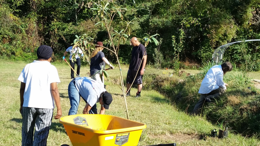 Rosemon Orchard Workday - Lowes