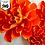 Thumbnail: SVG/PDF Paper Marigold Collection