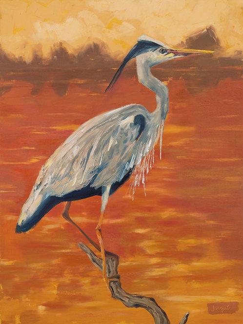 Blue Heron at Sunset Archival Print