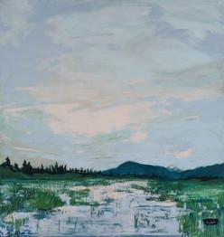 Perazzo Meadow Wetlands