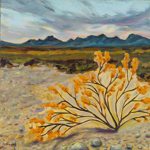 Desert Brush Original Oil Painting